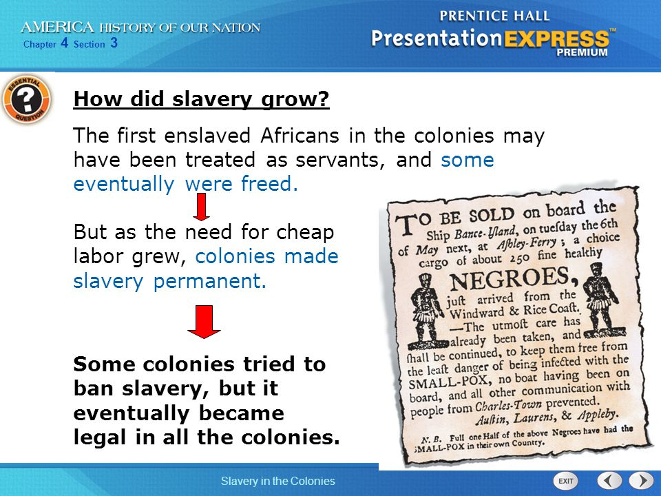 How did slavery grow The first enslaved Africans in the colonies may have been treated as servants, and some eventually were freed.