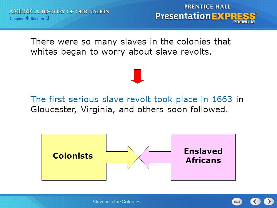 There were so many slaves in the colonies that whites began to worry about slave revolts.