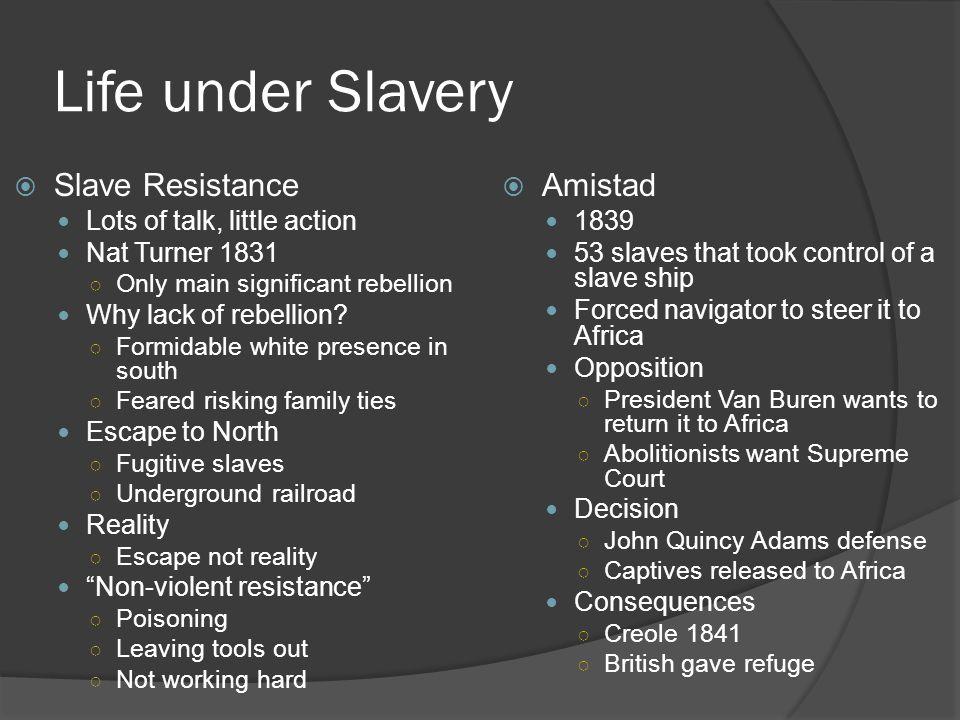 Life under Slavery Slave Resistance Amistad
