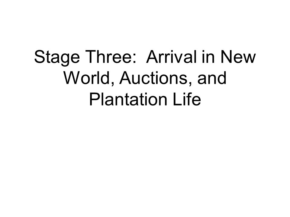Stage Three: Arrival in New World, Auctions, and Plantation Life