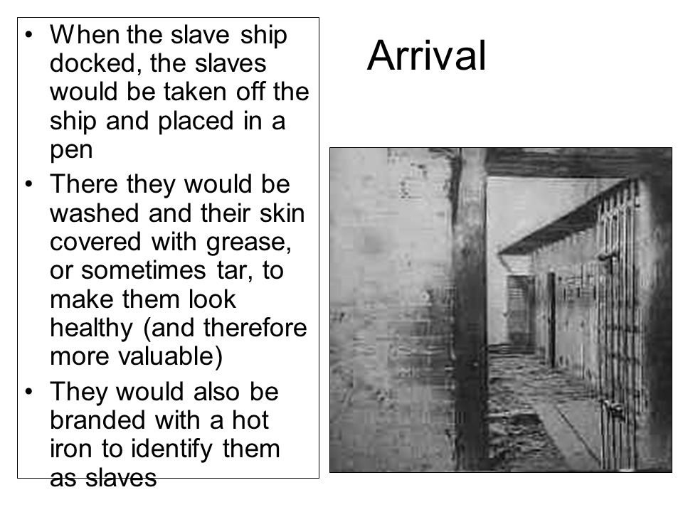 Arrival When the slave ship docked, the slaves would be taken off the ship and placed in a pen.