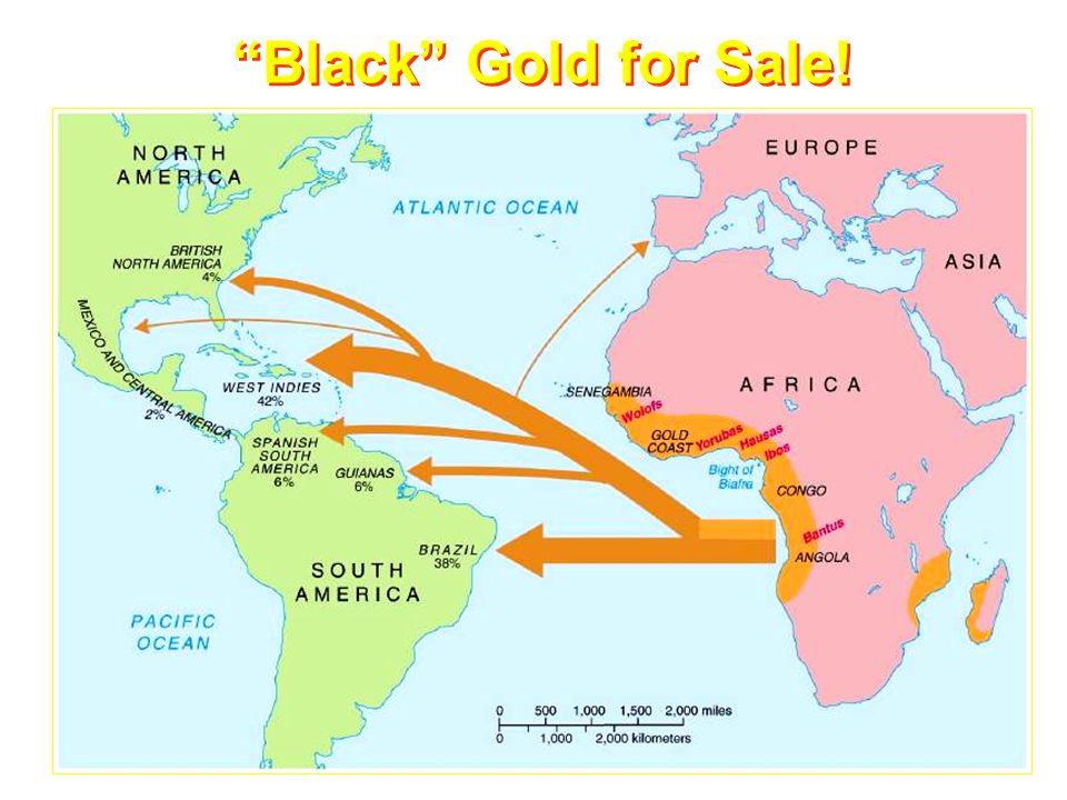 Black Gold for Sale!