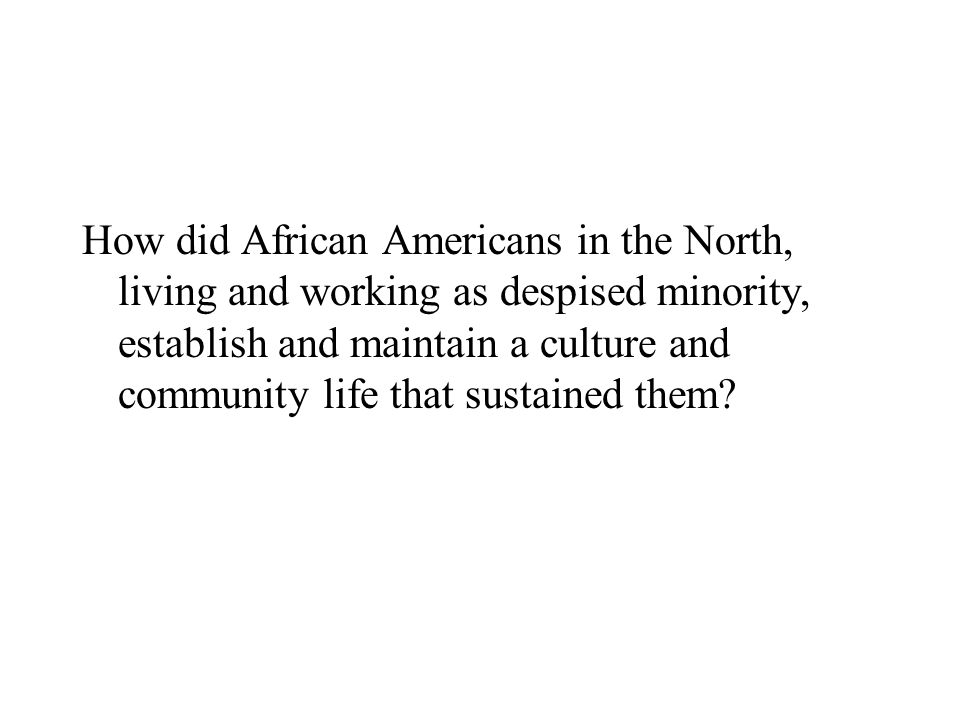 How did African Americans in the North, living and working as despised minority, establish and maintain a culture and community life that sustained them
