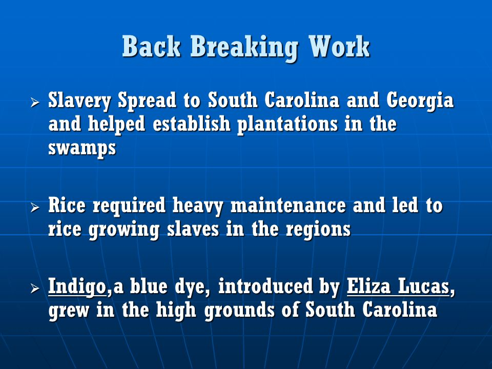 Back Breaking Work Slavery Spread to South Carolina and Georgia and helped establish plantations in the swamps.