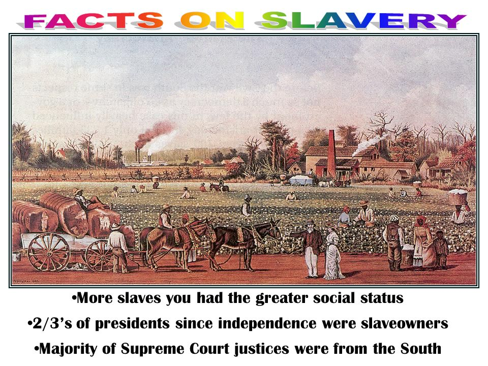 More slaves you had the greater social status
