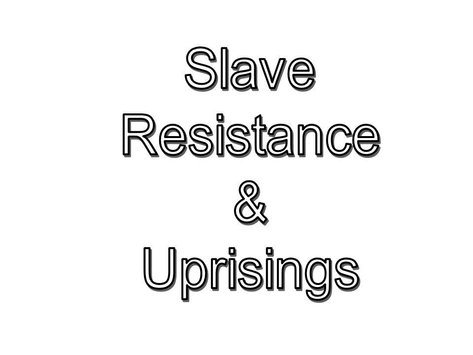 Slave Resistance & Uprisings