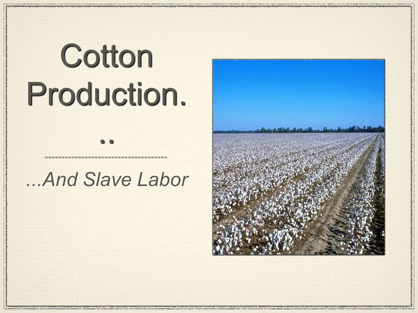 Cotton Production... ...And Slave Labor