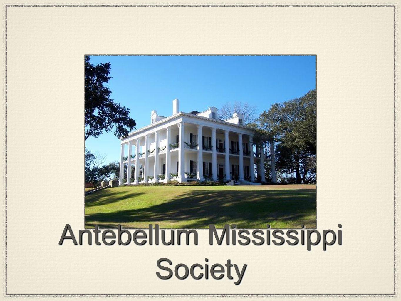 Antebellum Mississippi Society