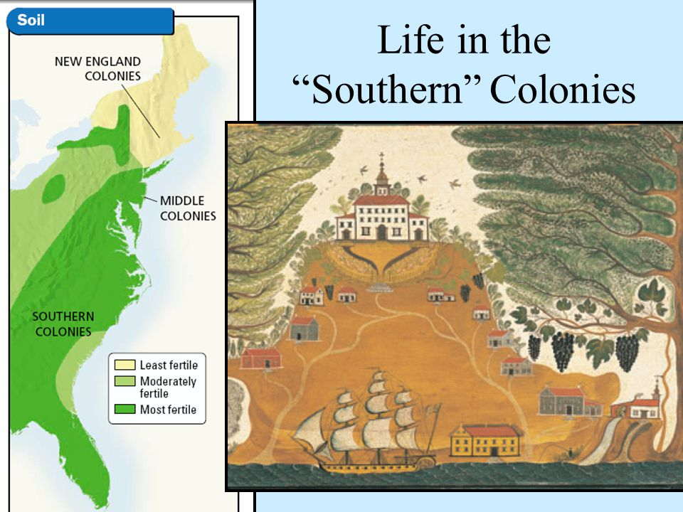 Life in the Southern Colonies