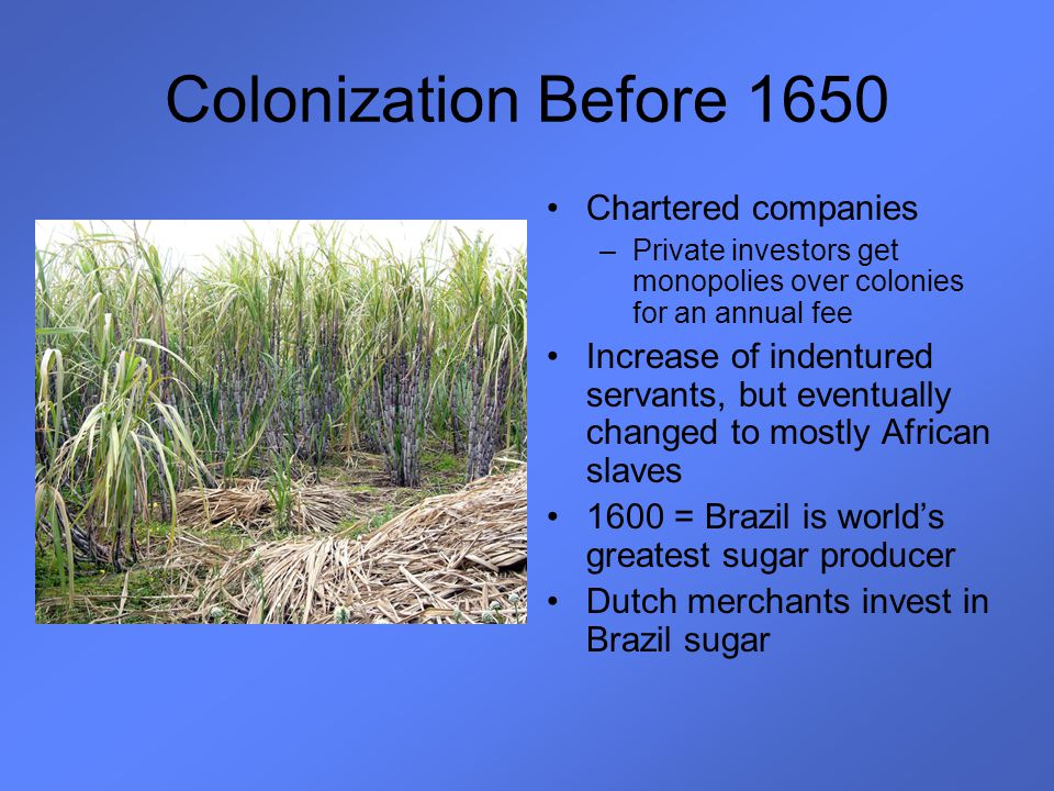 Colonization Before 1650 Chartered companies