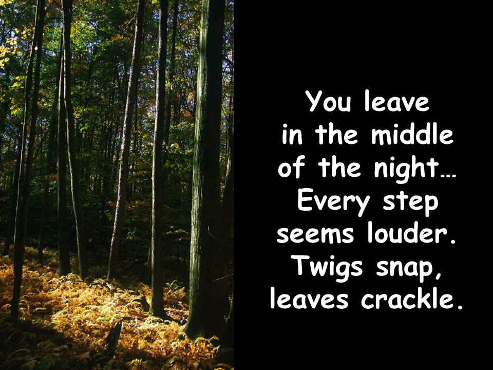 You leave in the middle of the night… Every step seems louder