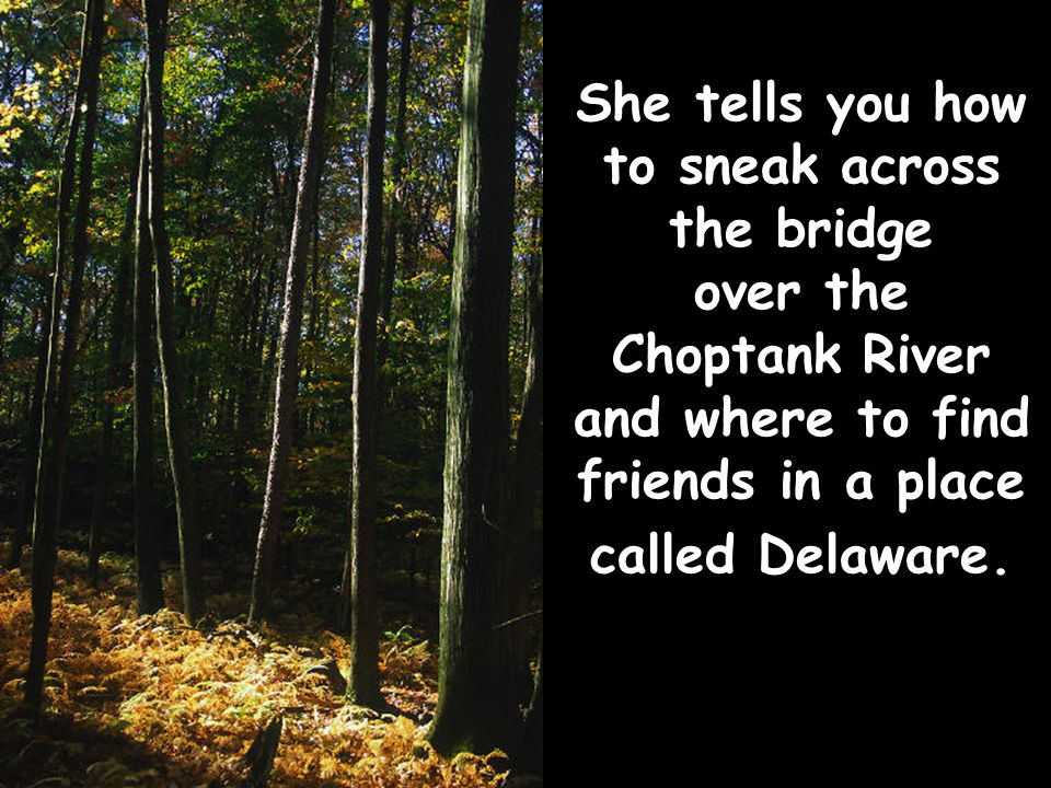 She tells you how to sneak across the bridge over the Choptank River and where to find friends in a place called Delaware.
