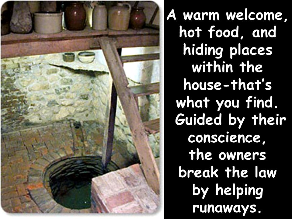 A warm welcome, hot food, and hiding places within the house-that's what you find.