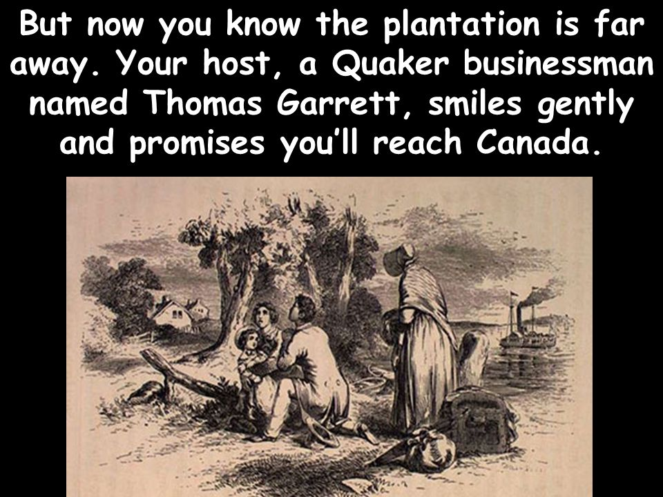 But now you know the plantation is far away