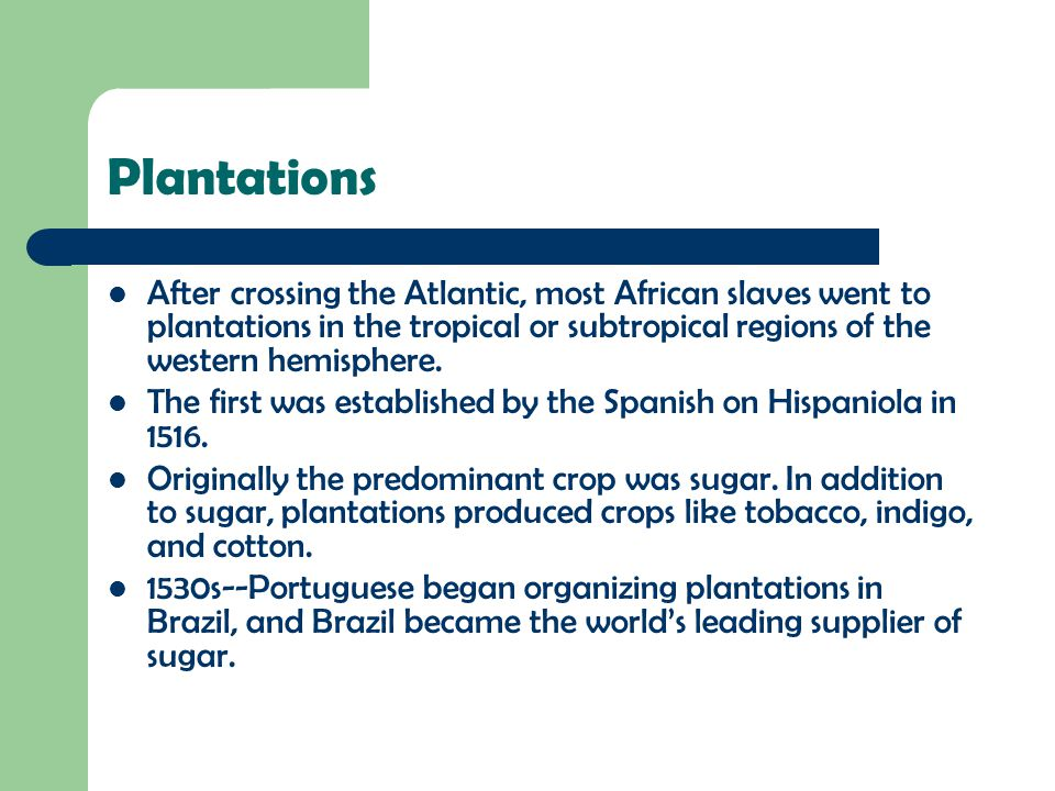 Plantations After crossing the Atlantic, most African slaves went to plantations in the tropical or subtropical regions of the western hemisphere.
