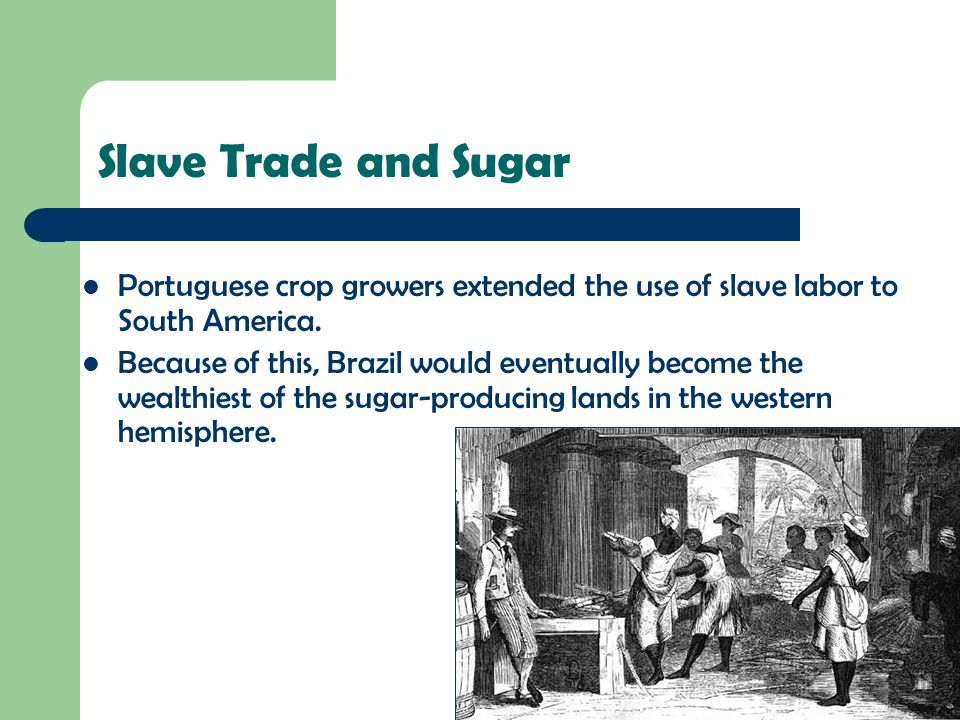 Slave Trade and Sugar Portuguese crop growers extended the use of slave labor to South America.