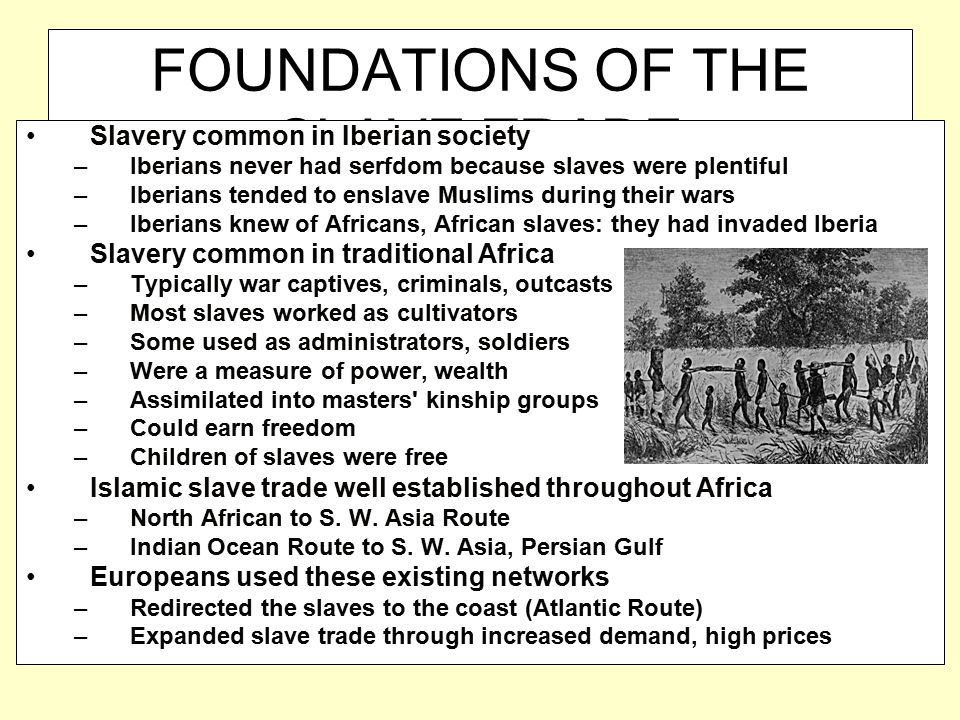 FOUNDATIONS OF THE SLAVE TRADE