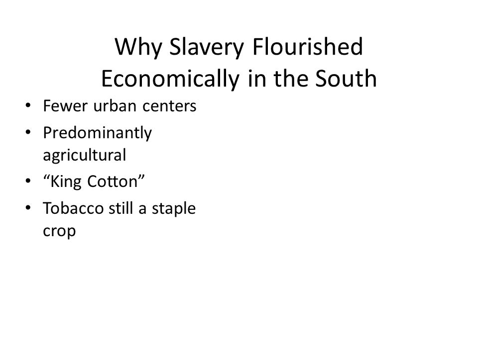 Why Slavery Flourished Economically in the South