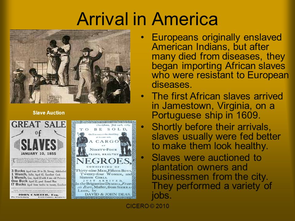 Arrival in America