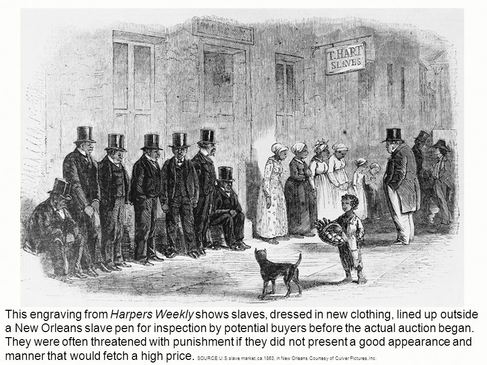 This engraving from Harpers Weekly shows slaves, dressed in new clothing, lined up outside a New Orleans slave pen for inspection by potential buyers before the actual auction began.