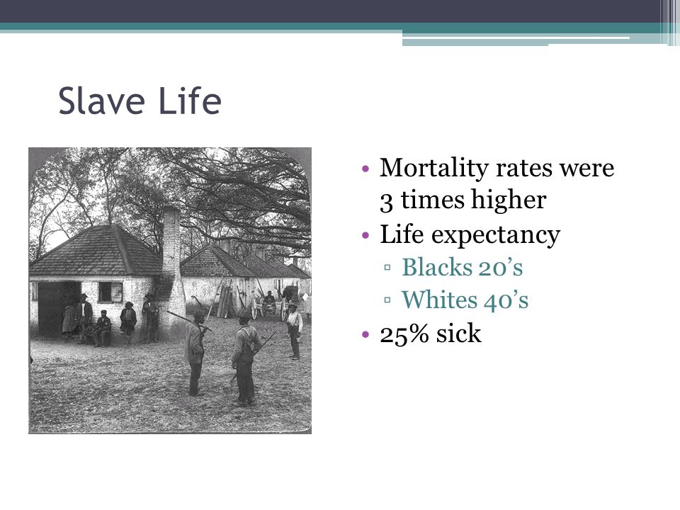 Slave Life Mortality rates were 3 times higher Life expectancy