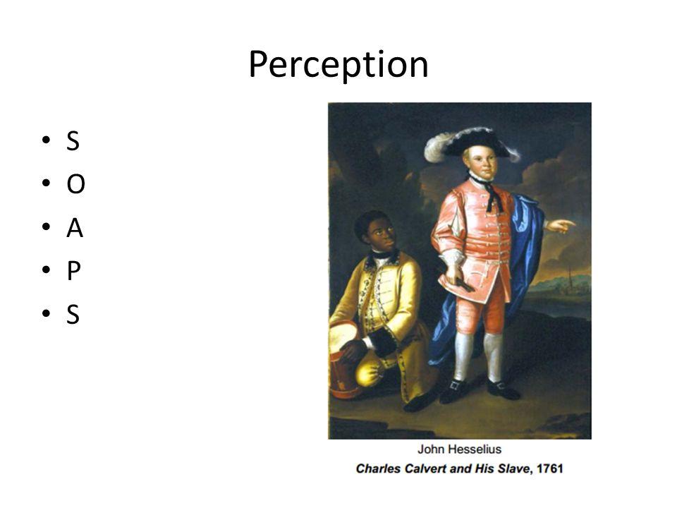 Perception S O A P