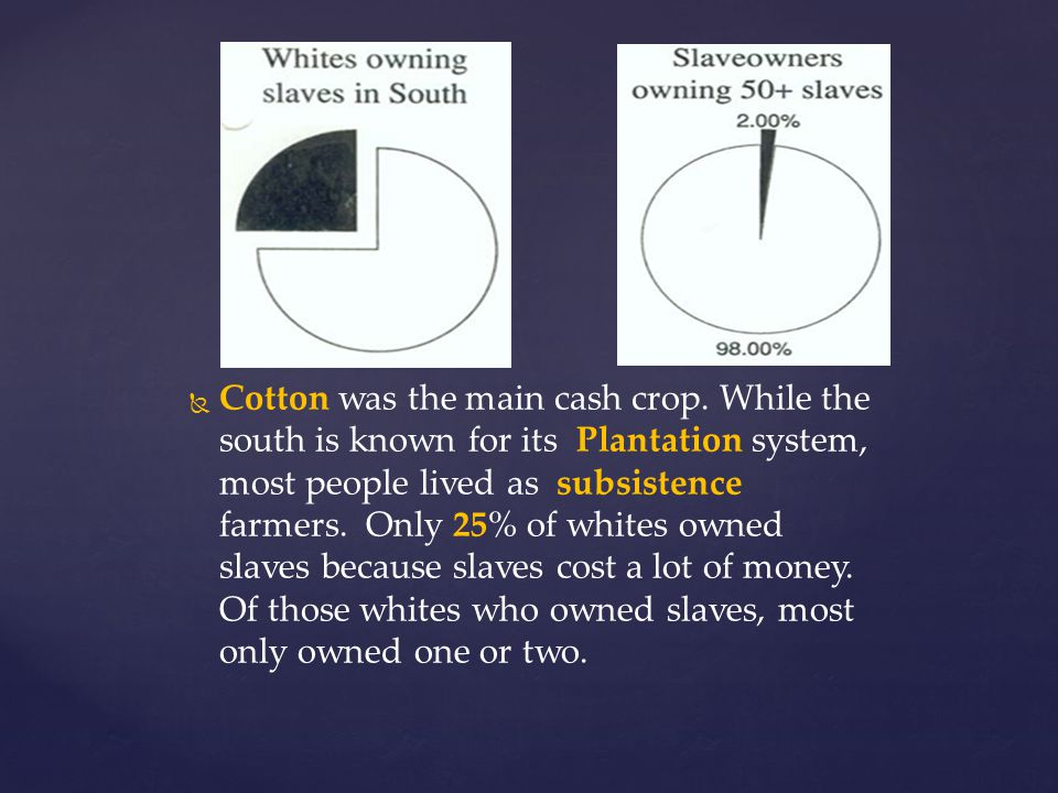 Cotton was the main cash crop