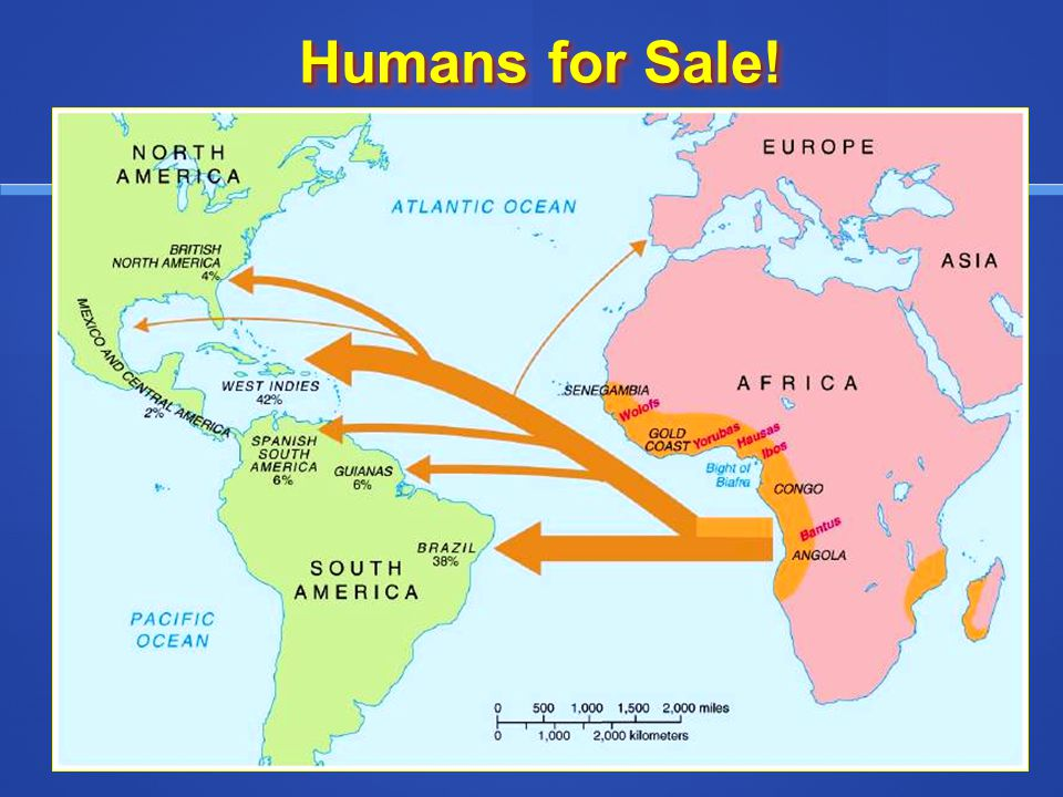 Humans for Sale!