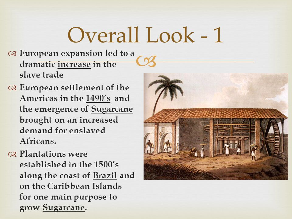 Overall Look - 1 European expansion led to a dramatic increase in the slave trade.