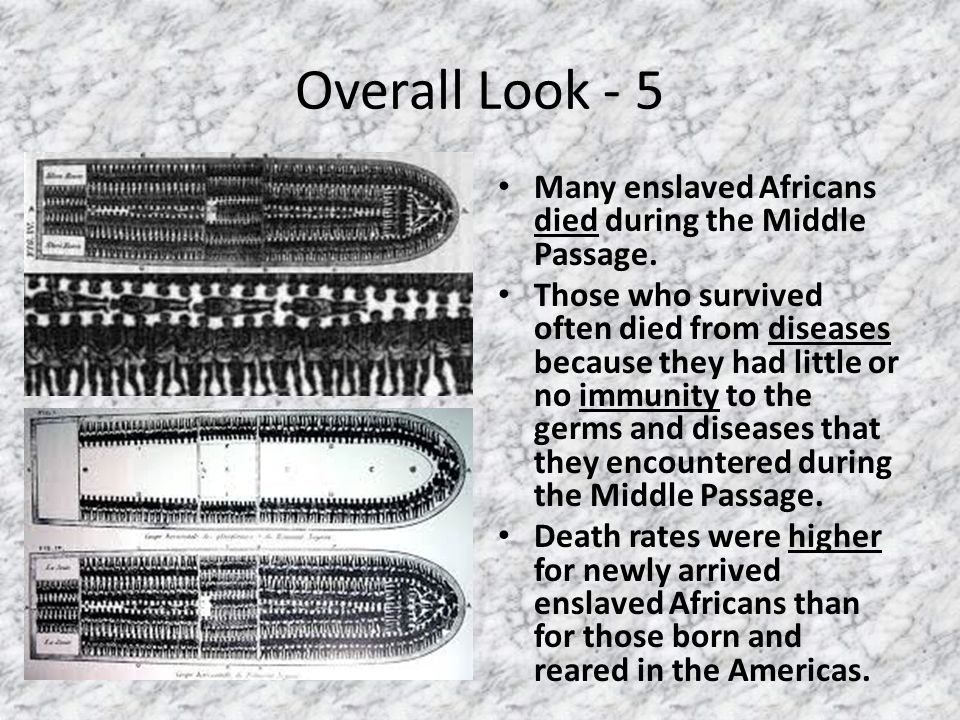 Overall Look - 5 Many enslaved Africans died during the Middle Passage.