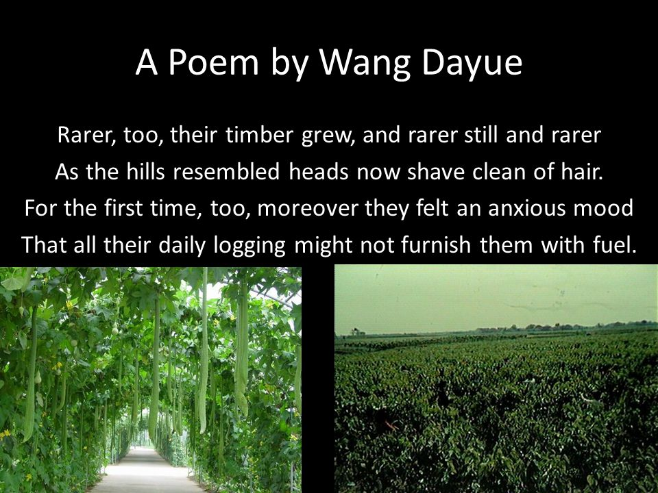 A Poem by Wang Dayue