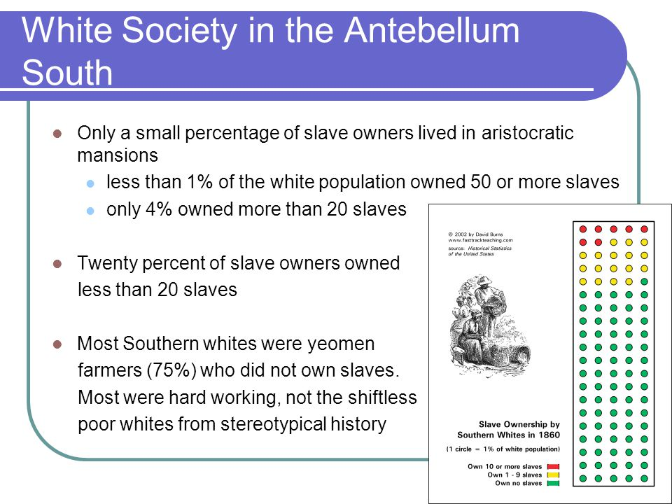 White Society in the Antebellum South