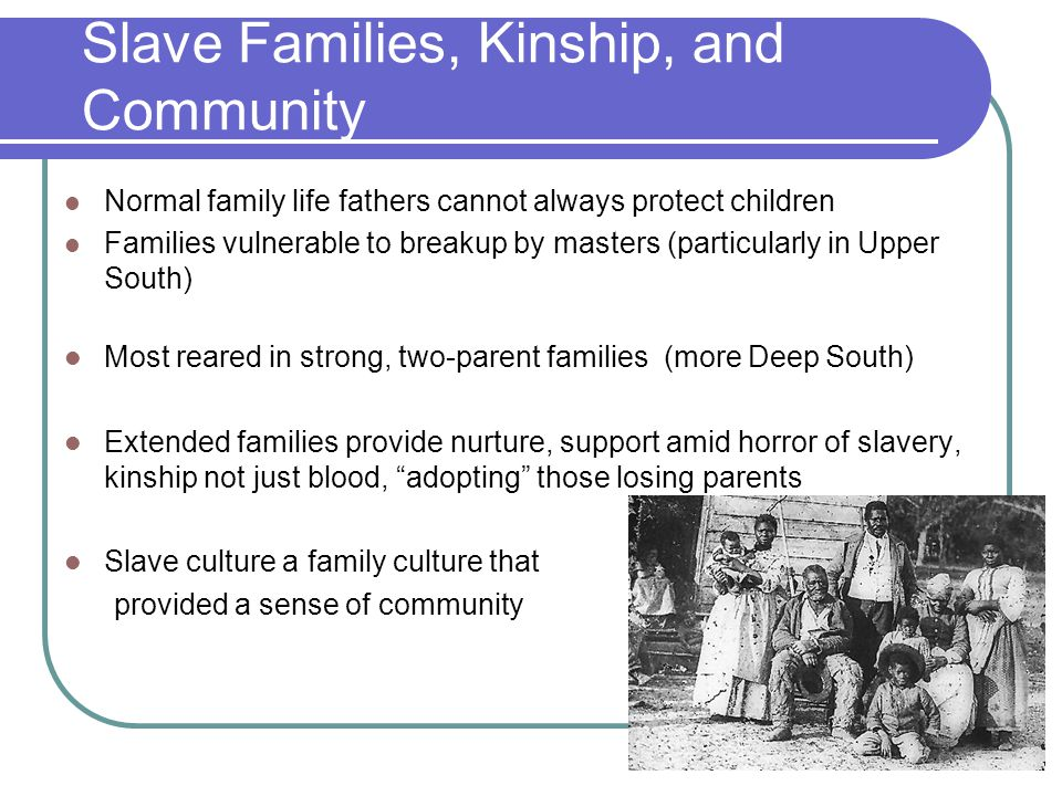 Slave Families, Kinship, and Community