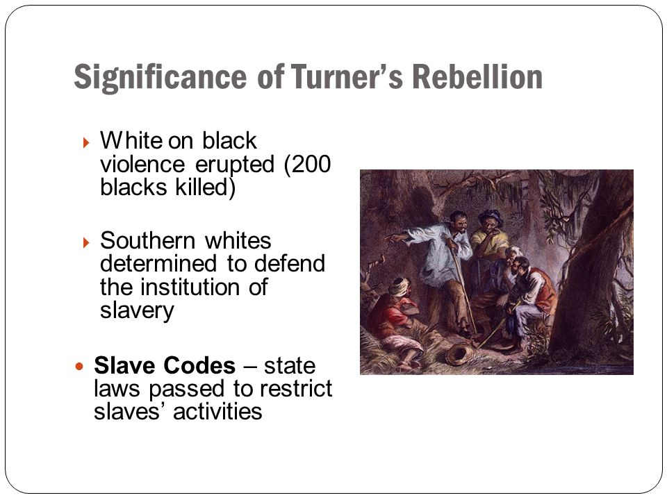 Significance of Turner's Rebellion