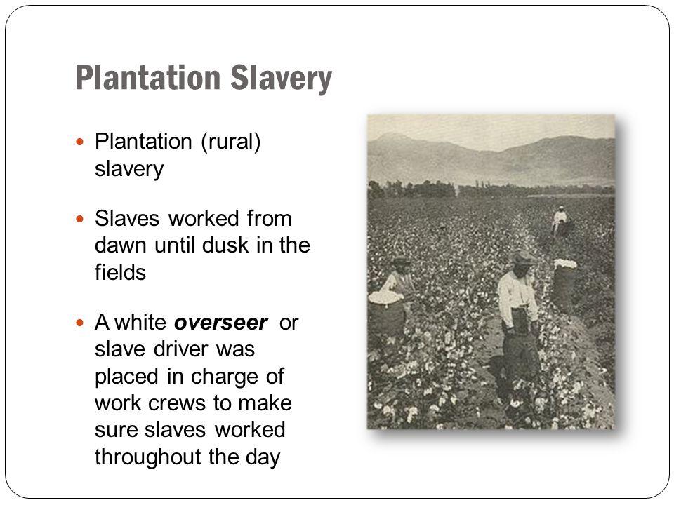 Plantation Slavery Plantation (rural) slavery