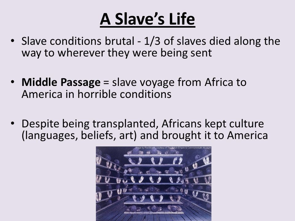 A Slave's Life Slave conditions brutal - 1/3 of slaves died along the way to wherever they were being sent.