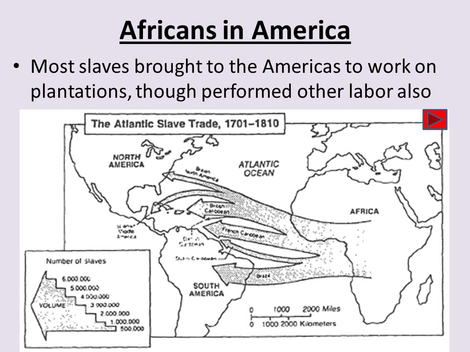 Africans in America Most slaves brought to the Americas to work on plantations, though performed other labor also.