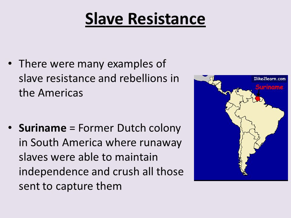 Slave Resistance There were many examples of slave resistance and rebellions in the Americas.