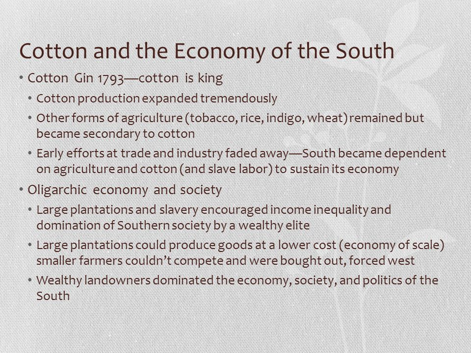 Cotton and the Economy of the South
