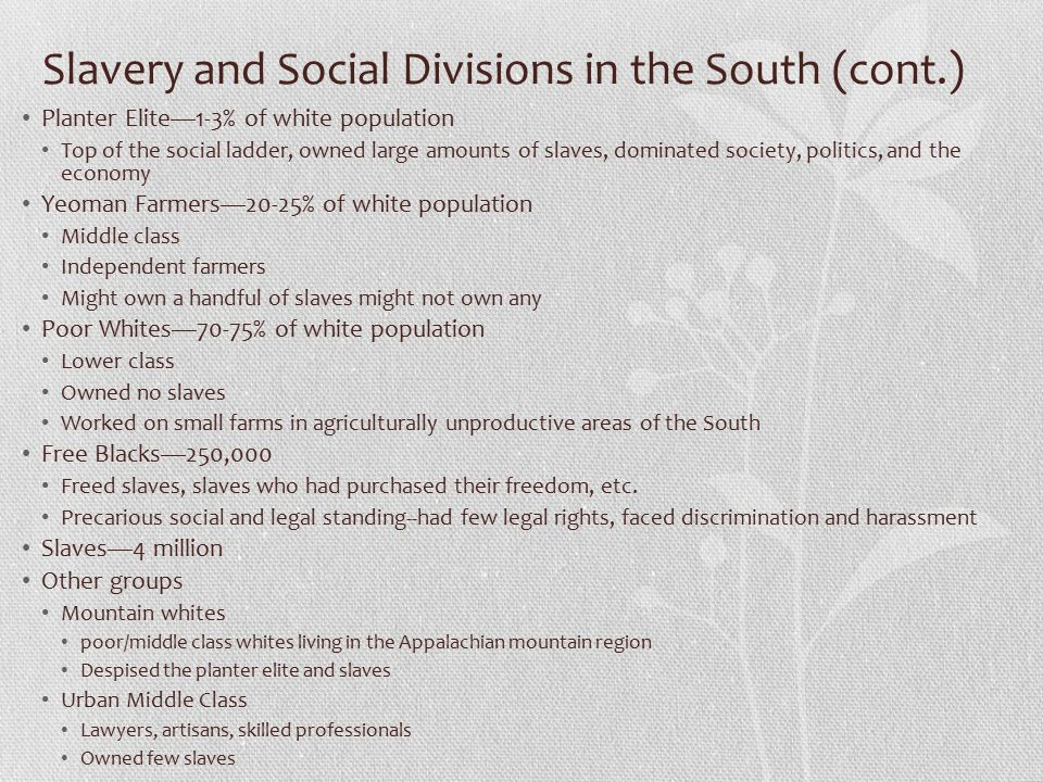 Slavery and Social Divisions in the South (cont.)