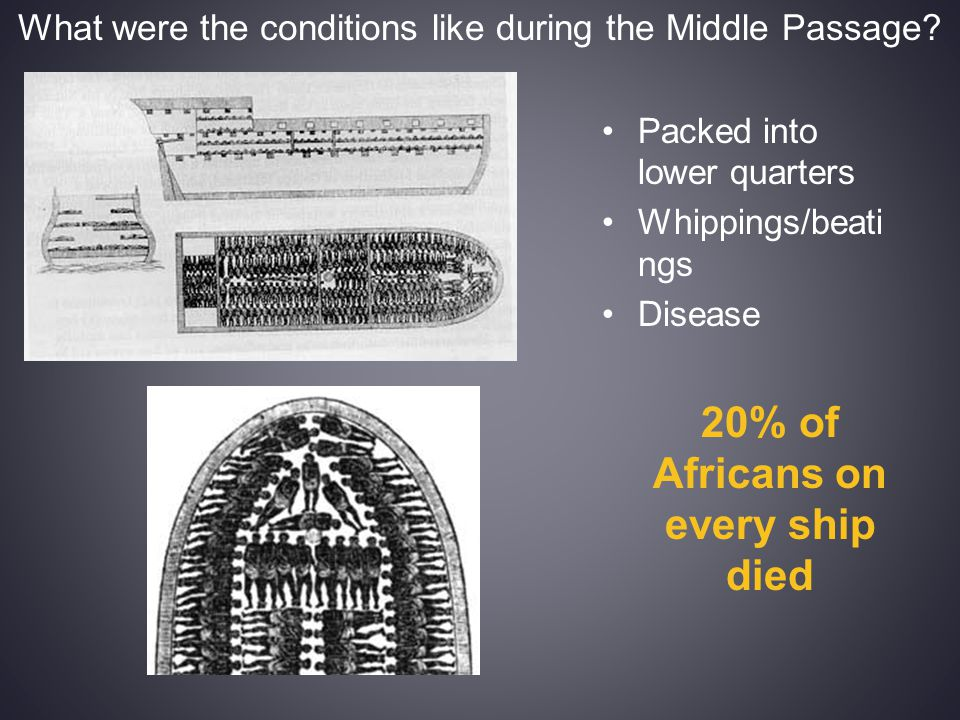 What were the conditions like during the Middle Passage