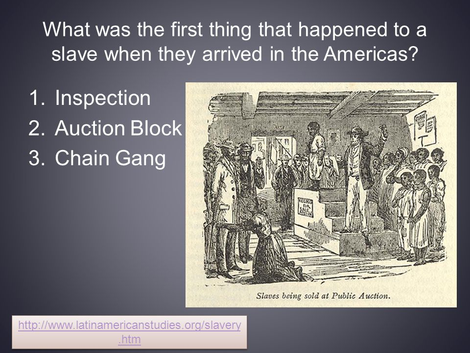 Inspection Auction Block Chain Gang