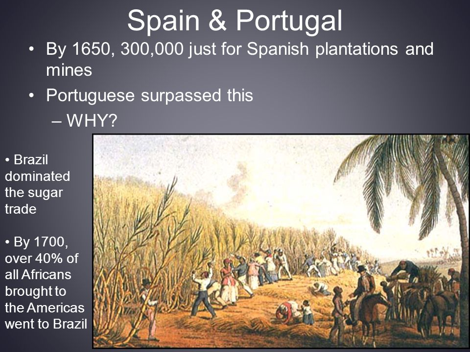 Spain & Portugal By 1650, 300,000 just for Spanish plantations and mines. Portuguese surpassed this.