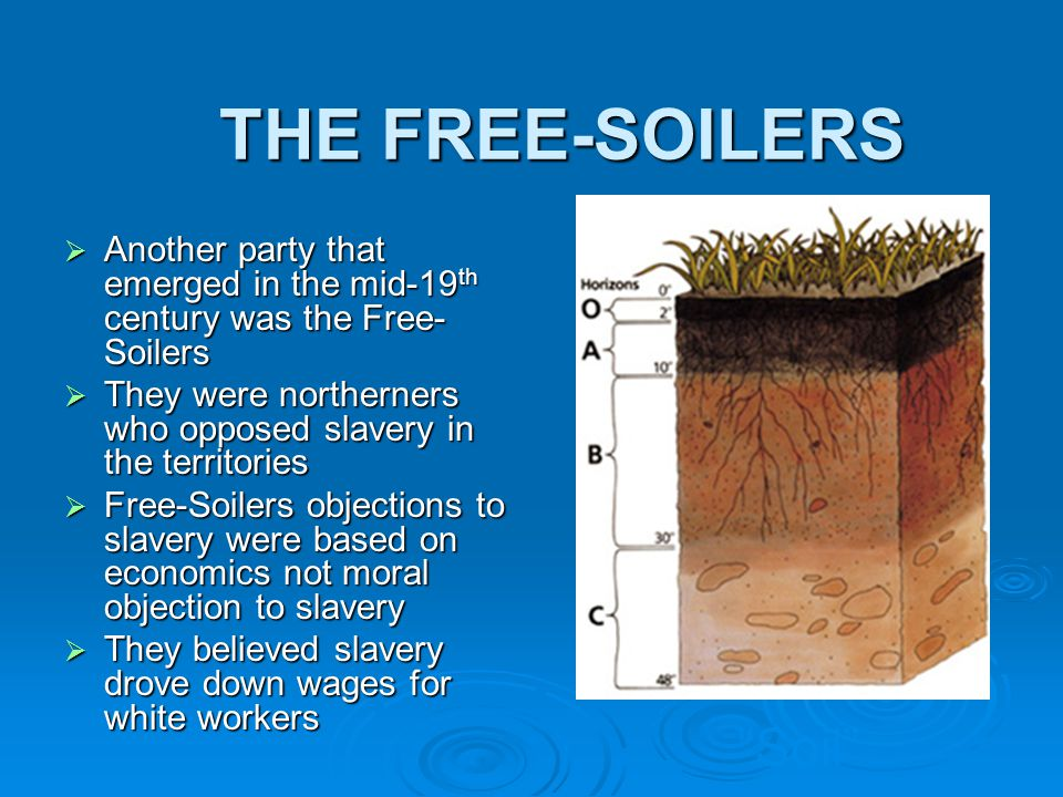THE FREE-SOILERS Soil