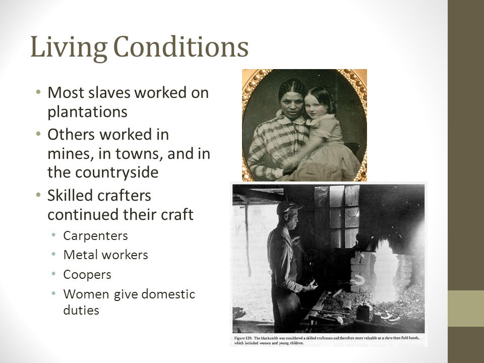 Living Conditions Most slaves worked on plantations