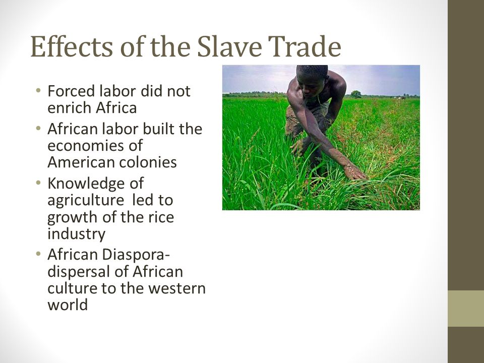 Effects of the Slave Trade