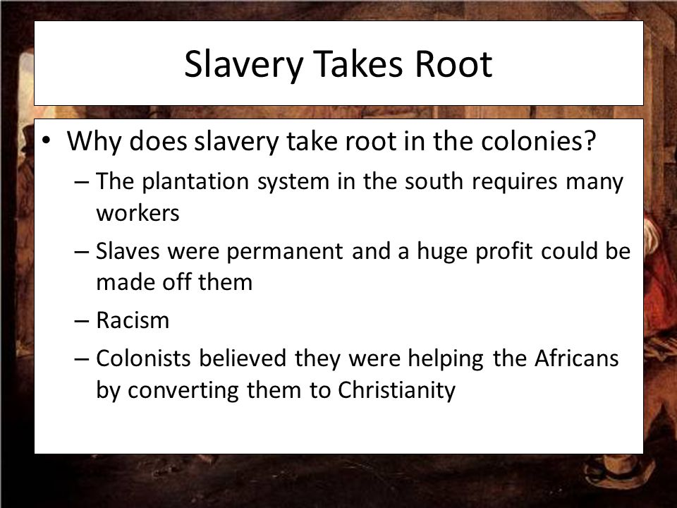 Slavery Takes Root Why does slavery take root in the colonies