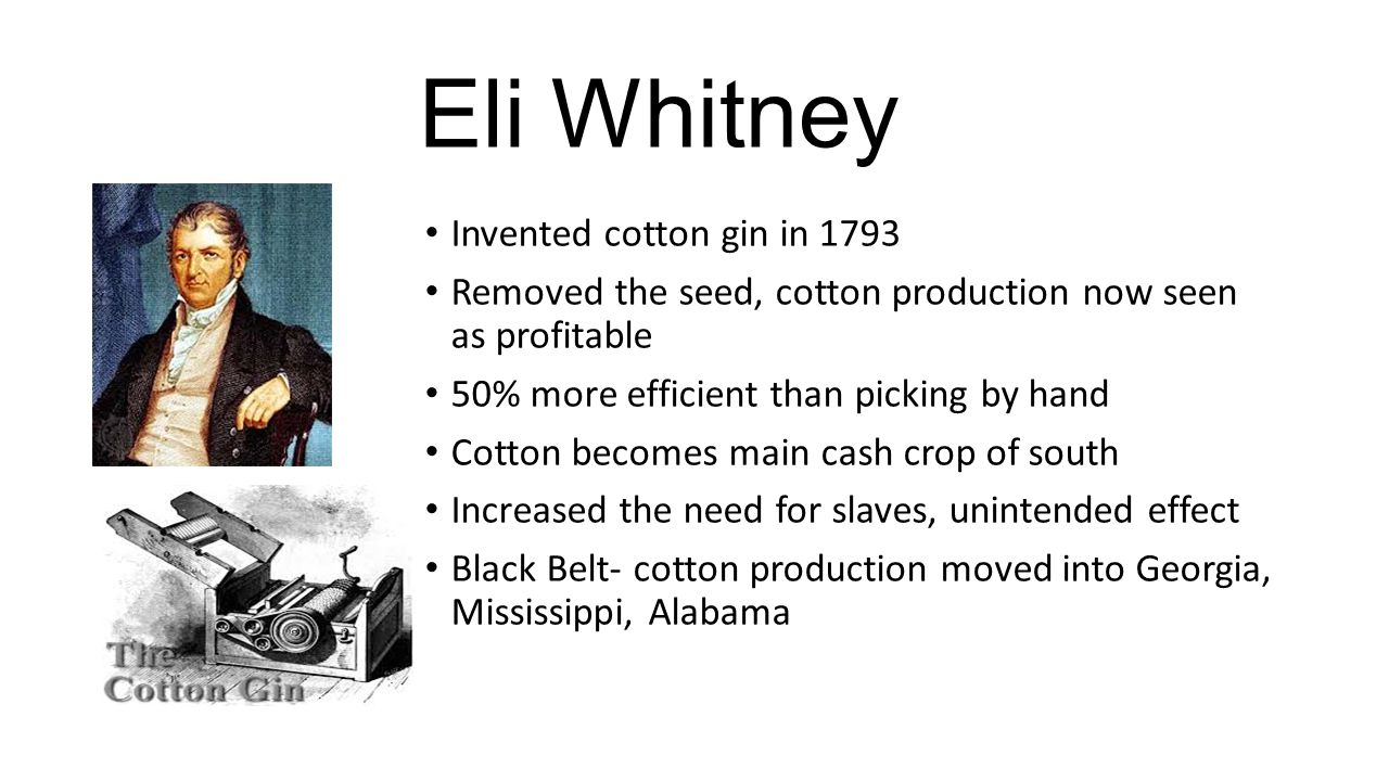 Eli Whitney Invented cotton gin in 1793