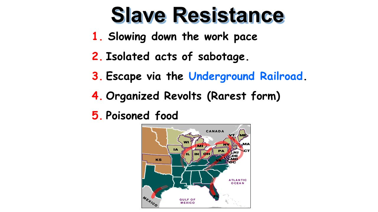 Slave Resistance 1. Slowing down the work pace