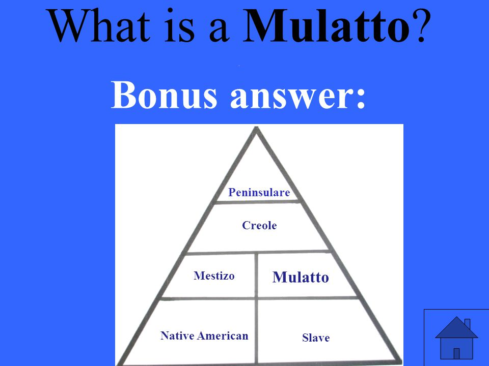 What is a Mulatto Bonus answer: Mulatto . Peninsulare Creole Mestizo